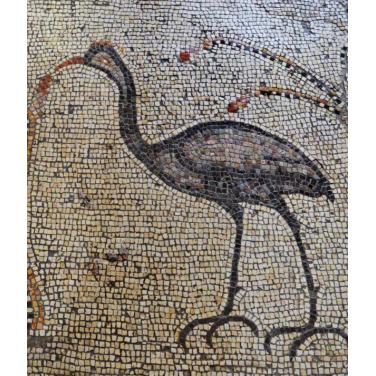 Héron (mosaïque du 5e siècle. Tabgha)