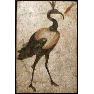 Ibis (fresque murale. Pompéi)